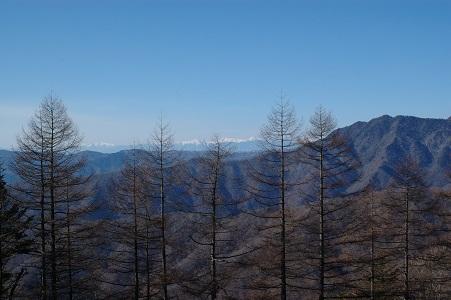ブナ坂からアルプスの山々
