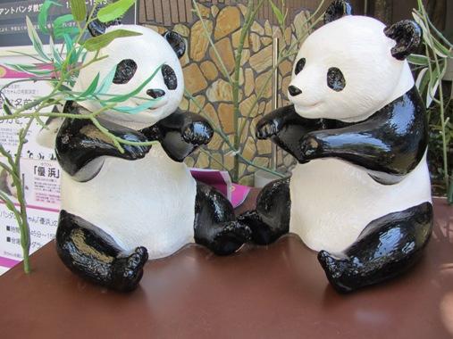 pandafamily