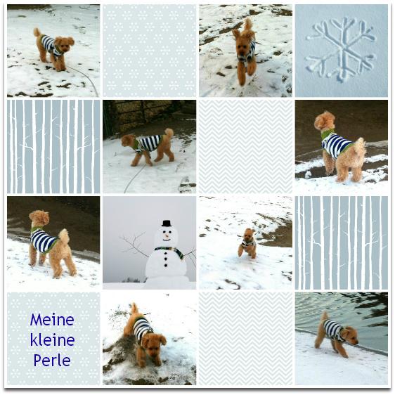 snow perle2