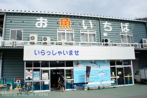 DSC00396_copy.jpg