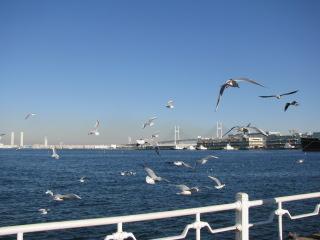 2011-12-11-19.jpg