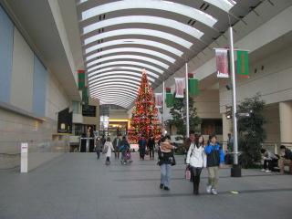2011-12-11-24.jpg