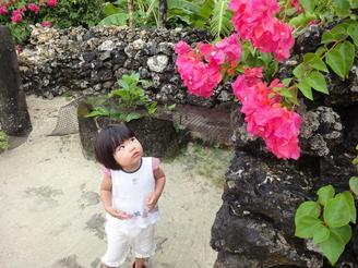 2010Ishigaki_248.jpg