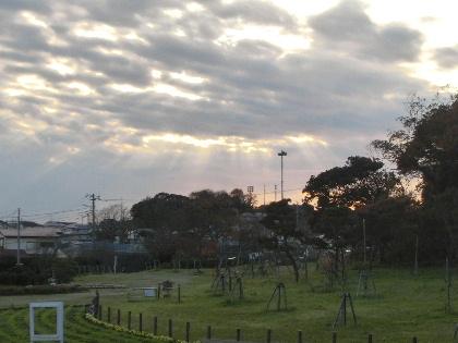 141207K公園空