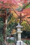 2013京都 紅葉3