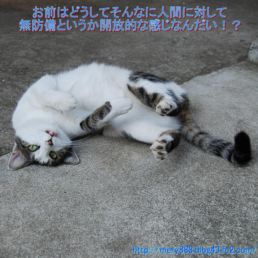 いじくり003