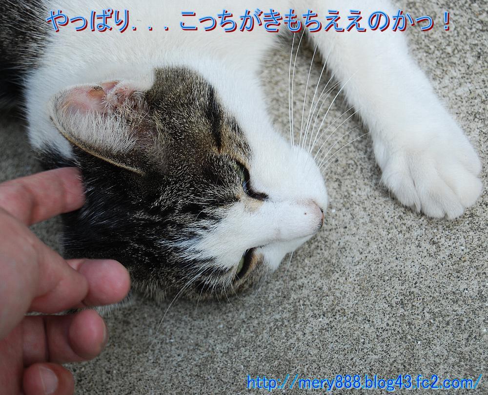 いじくり004