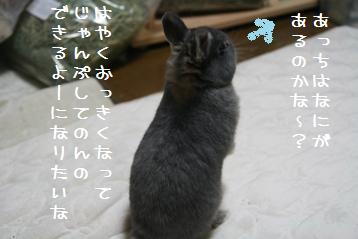 20110103_02.jpg