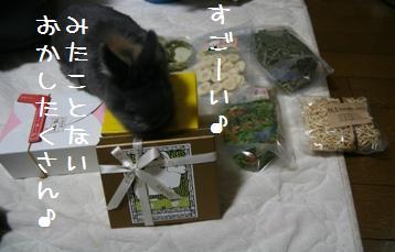 20110212_03.jpg
