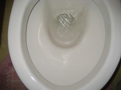 moni_20131223_toilet_6.jpg