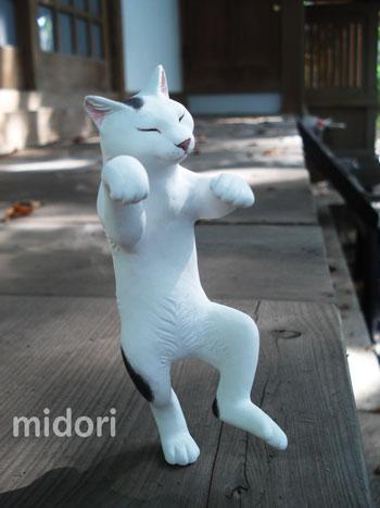 みどねんど~猫じゃ5