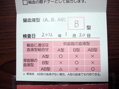 よるの献血3