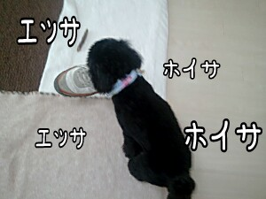 2011-06-04_16_54_08-picsay.jpg