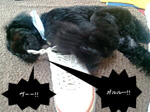 2011-06-04_16_55_20-picsay.jpg