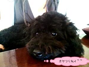 2011-0605-134532383-picsay.jpg