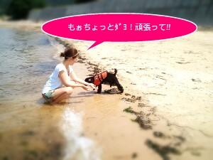 2011-07-2813_52_34-picsay.jpg