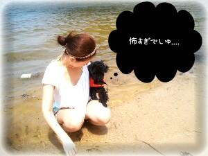 2011-07-28_13_52_48-picsay.jpg