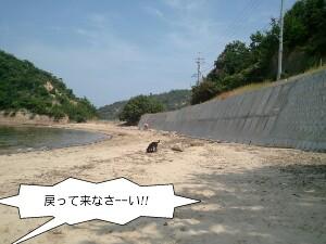 2011-07-28_14_12_33-picsay.jpg