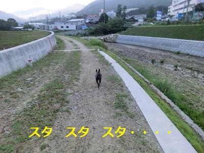 2011828 (15)