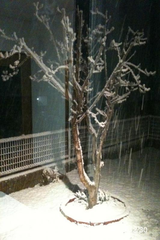 LDK側から冬の景色