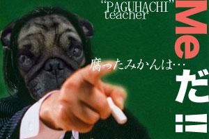 パグ八先生