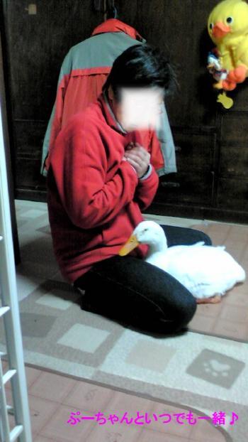 2011-0319-ga-chan3_convert_20110322150945.jpg