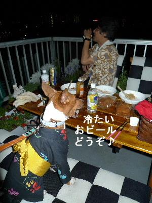 2011_0807ナッキー0113