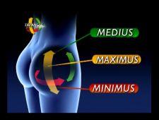 inner butt image
