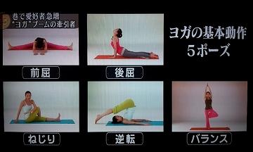 s-yoga 5pose