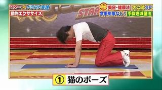 s-doubutsu exercise12