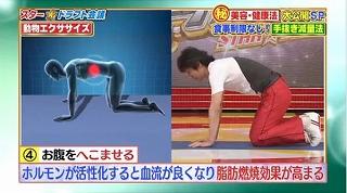 s-doubutsu exercise15