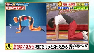 s-doubutsu exercise16