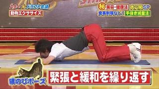 s-doubutsu exercise19