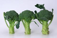 s-broccoli.jpg
