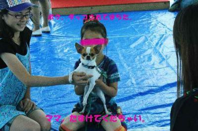 2010_0711_104245-IMG_5013-2_convert_20100711160803.jpg