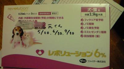 201105301917000_convert_20110530194604.jpg