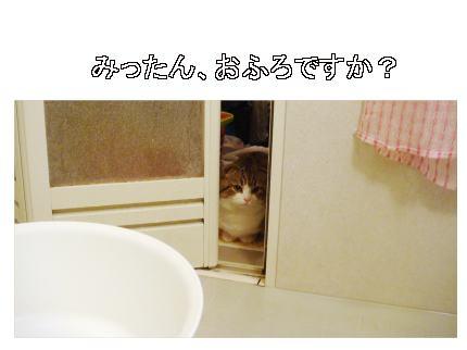 お風呂ですか?