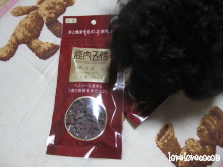 IMG_5519-cocoa.jpg