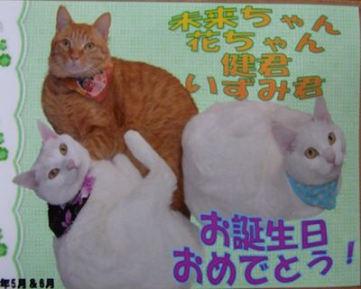 present11_R_20110529171950.jpg