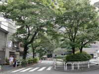 ラズンバ@大井町・並木道