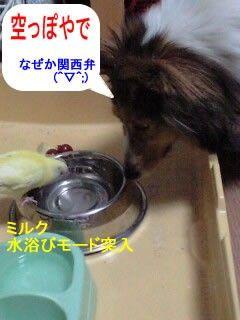 blog_import_4d38021eef89c.jpg