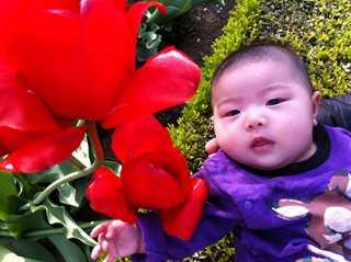 セリカとお花