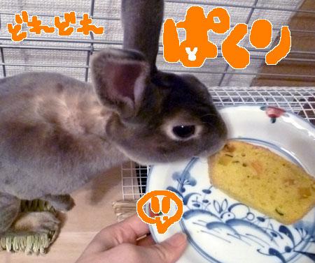 20120115:ぱくり?!