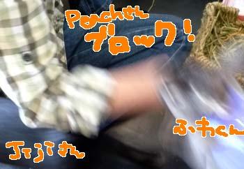20150512:Peachさんブロック!