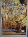 H251122-24 奈義町高円 菩提寺大イチョウライトアップ