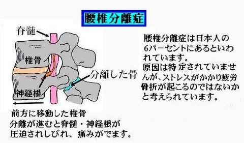 72dpi_4.jpg
