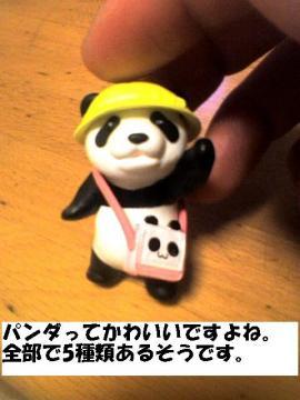goshurui.jpg