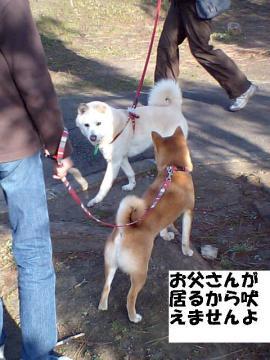 zushigoaisatsu.jpg