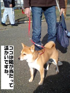 zushiundokoen1.jpg