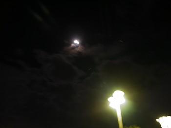 綺麗な満月だねぇ~。